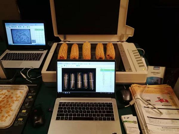 2019年国家黄淮海区玉米新品种展示示范观摩暨品种试验培训班在豫举行