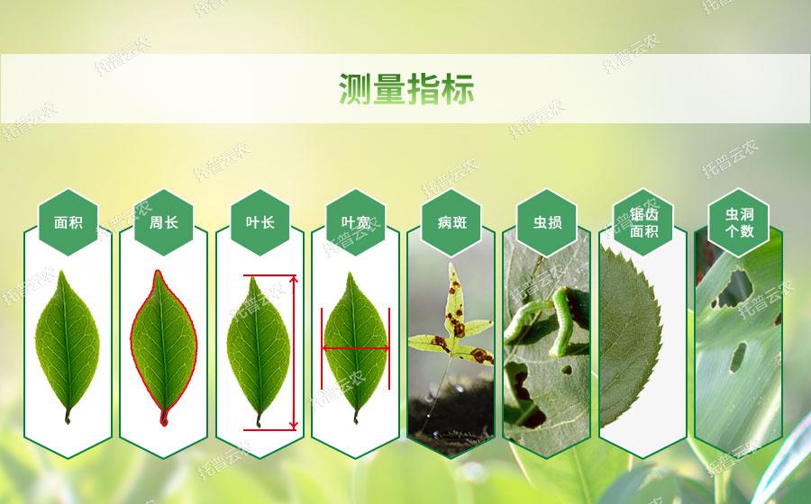 植物叶面积测量仪适用范围